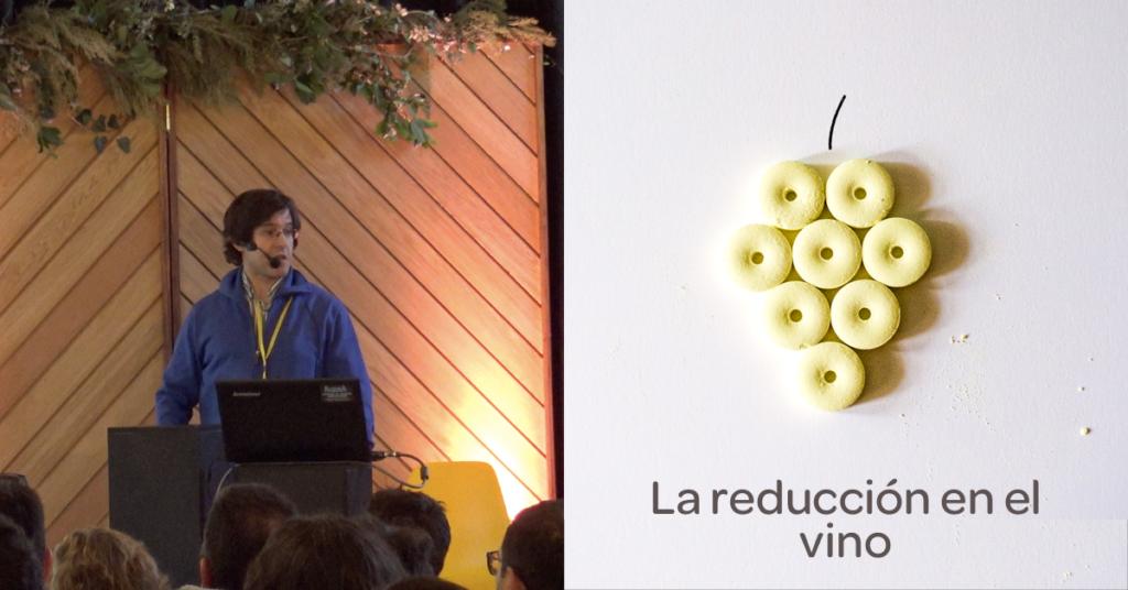 Ponencia de Vicente Ferreira sobre el azufre y la reducción en el Congreso Granja Cando 2019
