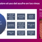 Ponencia de Dominique Roujou de Boubee sobre el azufre en el vino en Granja Cando 2019