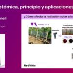 Ponencia sobre transcriptómica en viticultura por P. Carbonell en RedVitis 2017