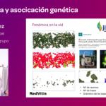 Ponencia Javier Ibáñez redvitis sobre transcriptómica y asociación genética