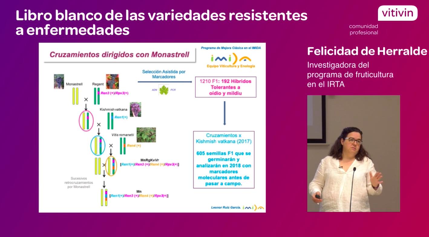Ponencia Felicidad de Herralde Resultados Vinovert Variedades resistentes