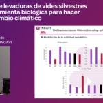 Ponencia sobre levaduras vides silvestres para combatir cambio climático Victor Tirado