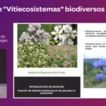 Ponencia de MA Aparicio diseño de vitiecosistemas biodiversos en jornada Julián Palacios 2019
