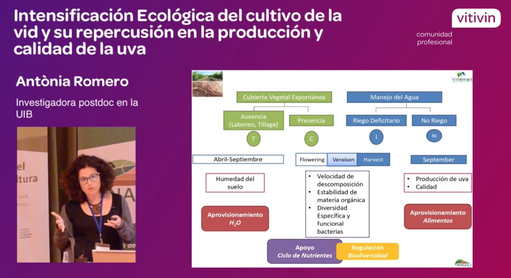 Antònia Romero ponencia SECH18