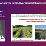Ponencia de E Gonçalves y Antero Martins Conocer y conservar biodiversidad - Júlian Palacios19