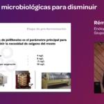 Ponencia de Rémi Schirlen soluciones microbiologicas reducir SO2 Granja cando 2019